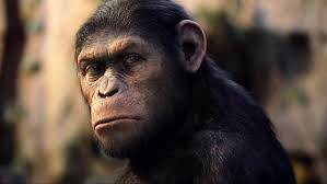 simian cinema the best and worst s featuring monkeys and apes photos