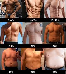 Skinny Fat Syndrome How To Get Rid Of It And Transform Your