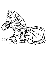 Small Picture Zebra Coloring Page H M Coloring Pages