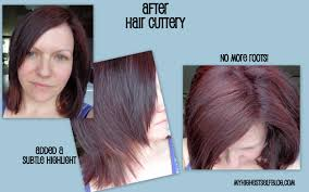 my experience at hair cuttery my