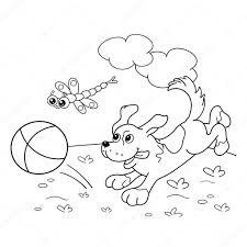 Kleurplaat Pagina Overzicht Van Hond Met Bal En Dragonfly