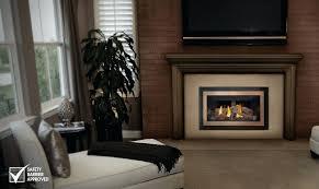 napoleon fireplace napoleon fireplace dealers newmarket