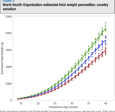 World Health Organization Weight Chart Adults The World Health Organization Fetal Growth Charts Concept