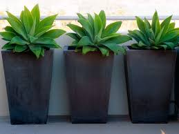 Small Picture Best 25 Tall planters ideas on Pinterest Outdoor potted plants