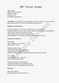 ndt resume samples ndt resume examples bilir opencertificates co
