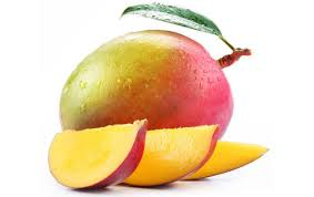 mango the king of fruits raw materials the other mangifera species produces a lower quality of fruit the mango is the native plant of the n subcontinent
