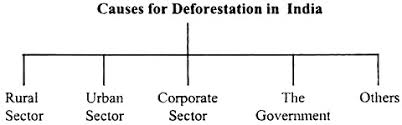 essay on deforestation meaning causes and effects essay 3 causes for deforestation