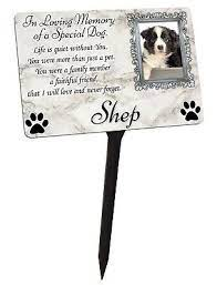 your photo personalised dog puppy