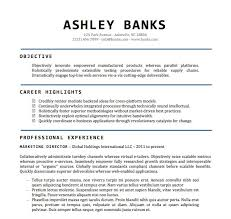 Resumes Templates For Word Delectable Resume Template Word Doc Sample Cv Templates For Swarnimabharathorg