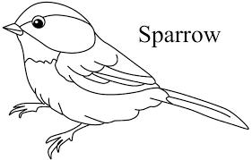 Top 20 Free Printable Bird Coloring Pages Online Birds Bird