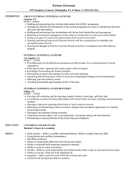 Internal Resume Sample Transfer Samples Sales Auditing