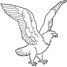 Small Picture Soaring Bald Eagle Drawing Coloring Page NetArt