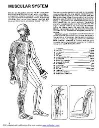 Small Picture Awesome Human Anatomy And Physiology Coloring Book Pictures New