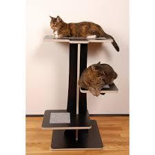 cool cat tree furniture. Square Cool Cat Trees Tree Furniture N