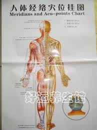 Us 6 42 17 Off Human Body Acupuncture Point Full Body In Massage Relaxation From Beauty Health On Aliexpress