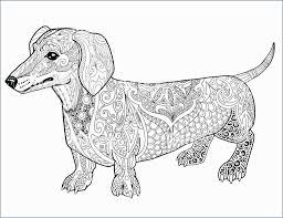 Weiner Dog Coloring Page Prettier Dachshund Coloring Pages Hellokids