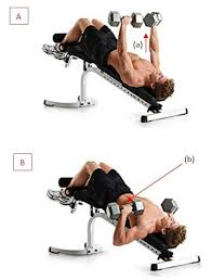 How To Decline Barbell Bench Press  Ignore LimitsDecline Barbell Bench