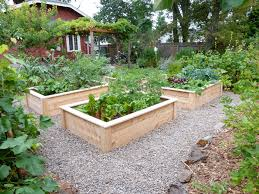 Small Picture LOVE these raised beds Im thinking the gravel might be a wee bit