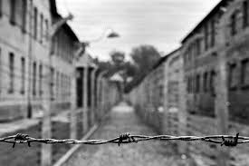 barbed wire fence holocaust. Plain Holocaust Wire Fence In Auschwitz Concentration Camp Poland On Barbed Fence Holocaust N