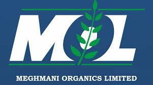 Meghmani Organics Q2fy19 Conf Call Details