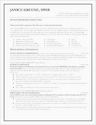 Microsoft Works Resume Templates Mesmerizing Microsoft Works Resume Templates Elegant 28 Inspirational Free