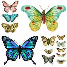 тату бабочка идеи и значение татуировки бабочка Tattoo Ideasru