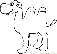 Small Picture Camel Coloring Page 004 Coloring Page Free Camel Coloring Pages