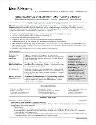 Good Resume Examples For First Job Mesmerizing A Good Resume Sample For A Job Extraordinary First Time Job R On