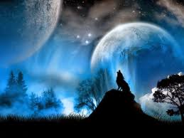 Wolf Wallpaper Black And Blue