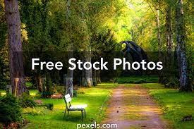 100,000+ Best Nature Background Photos ...