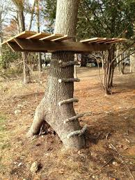 basic tree house pictures. Tree House Ideas Amazing Of Basic Plans Download Simple Treehouse . Pictures