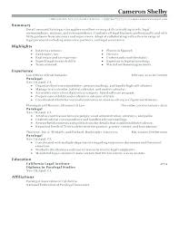 What Do Good Resumes Look Like. Resume For A Job Application Example ...