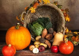 downloadable thanksgiving pictures thanksgiving images pixabay download free pictures