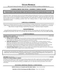 managers resume examples executive resume samples wendi weiner the writing guru