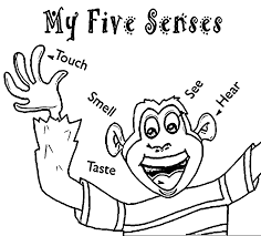 Small Picture Beautiful 5 Senses Coloring Sheet Ideas Coloring Page Design
