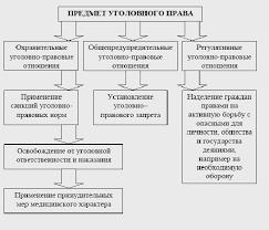 Реферат Понятие предмет задачи и функции российского уголовного  Понятие предмет задачи и функции российского уголовного права
