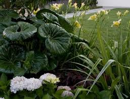 Small Picture 114 best New Zealand Designed Gardens images on Pinterest Karen