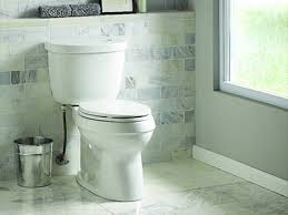 everything you need to know about your toilet