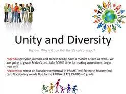 essay unity in diversity  essay unity in diversity essay unity in diversity