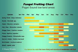 Hunting Season Chart Pacific Northwest Mushroaming Daniel Winklers Webpages