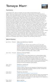 Video Journalist/News Reporter Resume samples