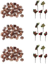 90 Pieces Mini Small Natural <b>Dried Pine</b> Cones in Bulk & 15 Pieces ...