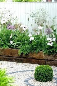 raised garden bed plants best plants for raised garden beds full image for flower shaped raised raised garden bed plants