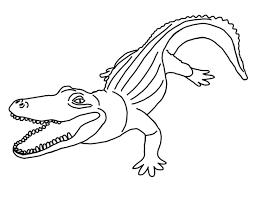 Dessin De Coloriage Alligator Imprimer Cp00731