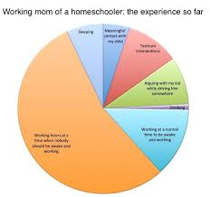 Homeschooling As A Working Mom The Pie Chart Alexandra Samuel