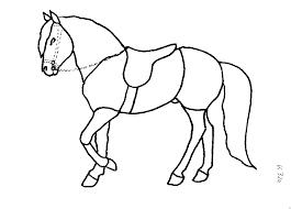 Unser ziel ist es, durch unser sattelkonzept zum wohle des pferdes und für die freude am reiten eine möglichst optimale passform zu erzielen. Malvorlagen Pferd Mit Sattel Coloring And Malvorlagan
