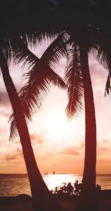 Maybe you would like to learn more about one of these? Tropical Beach Sunset Iphone Wallpapers 4k Hd Tropical Beach Sunset Iphone Backgrounds On Wallpaperbat