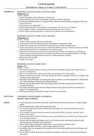 Resume For A Business Analyst Business Analyst Consultant Resume Samples Velvet Jobs