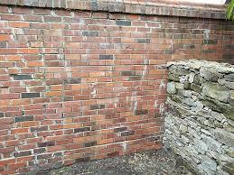 painting concrete blocks to look like bricks everything