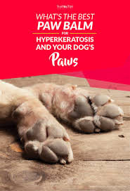 top best paw balm for dogs paw hyperkeratosis